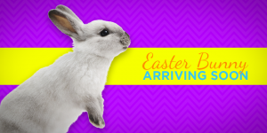 Easter Bunny Arrives At Harford Mall Today!