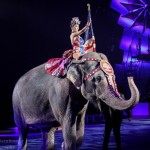 "REVIEW: Ringling Brothers and Barnum & Bailey presents ""Circus Xtreme"" Royal Farms Arena {March 16-27}"