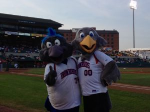 ironbirds_mascots