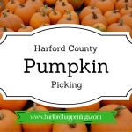 Best Places to Pick Pumpkins in Harford County