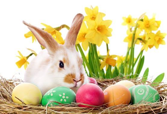 Easter Egg Hunt At YourSpace Storage