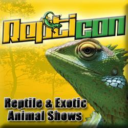 Exotic Reptile and Animal show slithers into the Timonium Fairgrounds – January 30 & 31