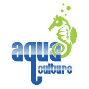 Swim Lessons for only $34 at Aqua Culture Swim School {Forest Hill}