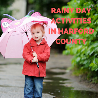 10 Things To Do On a Rainy Sunday In Harford County