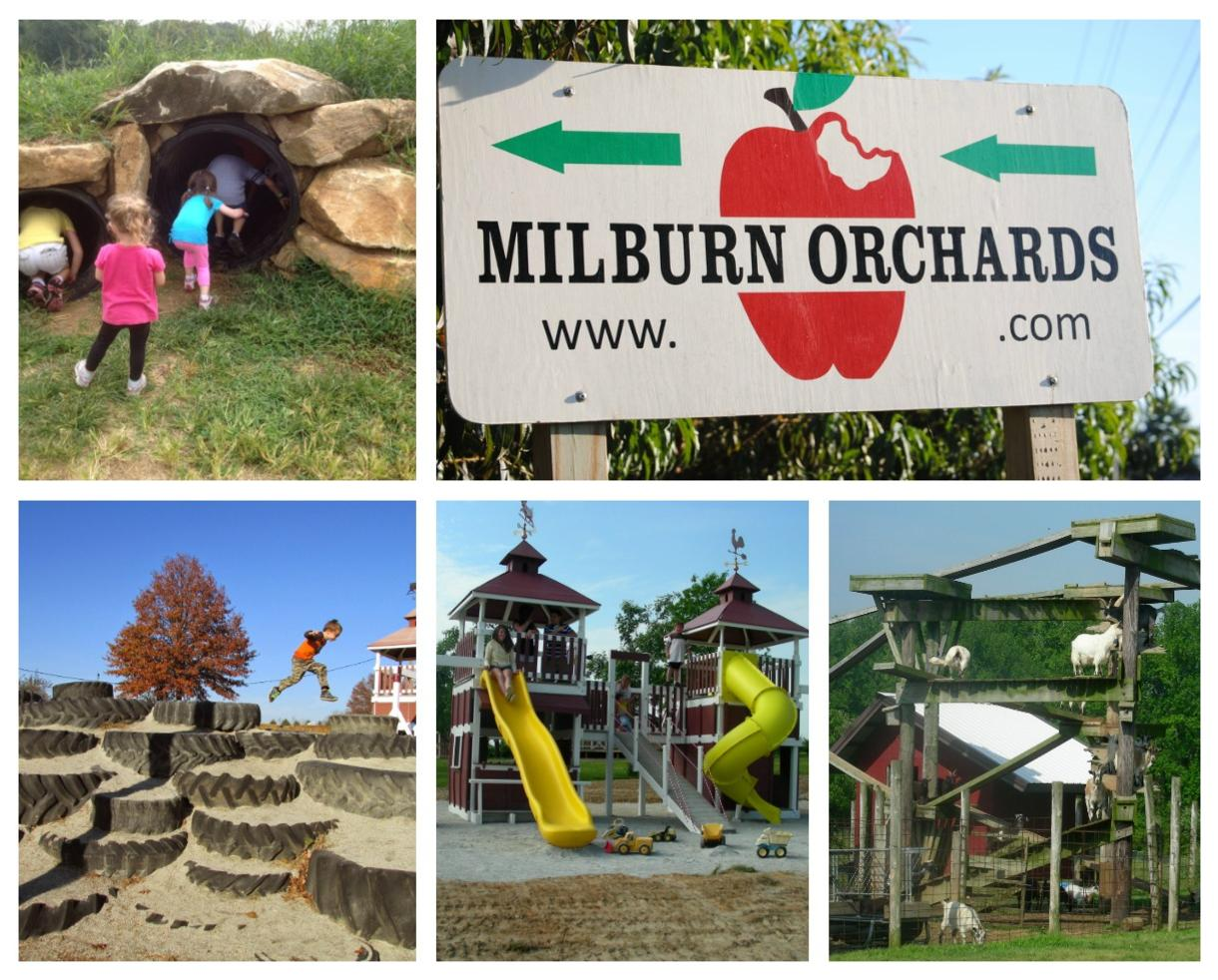 Save $6 on Admission at Milburn Orchards in Elkton!